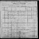 Miller Family - 1900 United States Federal Census
