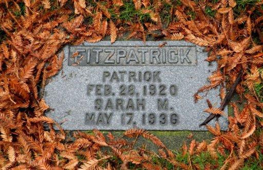 Patrick Fitzpatrick