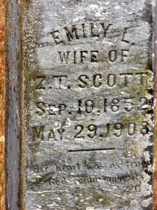 Emily L Plaster